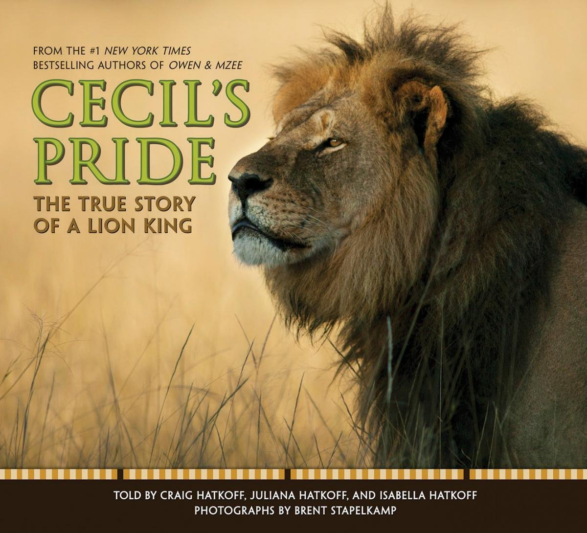 Cecils Pride Craig Hatkoff 9781338034455 Amazon Books