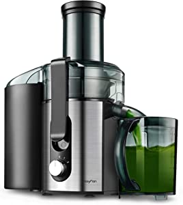 Centrifugal Juicer Machine, Compact Juice Extractor, BPA Free Dual Speeds Stainless Steel Juice Maker for Fruit and Vegetables, Detachable, Easy to Clean Orange Juicer (Large)