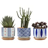 T4U 3 Inch Ceramic Succulent Planter Pots with Bamboo Tray Set of 3, Japanese Style Porcelain Handicraft as Gift for Mom…