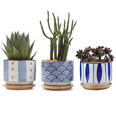 Ceramic Japanese Style Succulent Pot Set