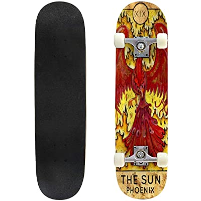 "Aries Zodiac Sign Stars on The Cosmic Sky Vector Celestial Animal Outdoor Skateboard 31""x8"" Pro Complete Skate Board Cruiser 8 Layers Double Kick Concave Deck Maple Longboards for Youths Sports : Sports & Outdoors"