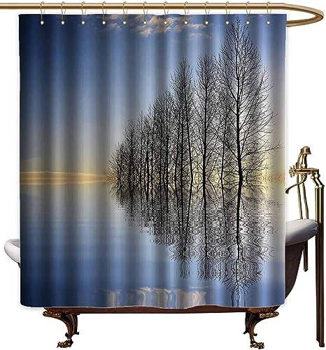 Cortinas para mampara de ducha, diseño de árboles en la parte superior del lago de Frozen en el invierno, estampado de las fuerzas de la naturaleza, cortina de ducha, 55 x 84