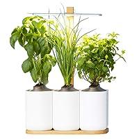 Prêt à Pousser Lilo, Le Potager d'intérieur Autonome Version 4 - Cultivez Toute l'année Simplement