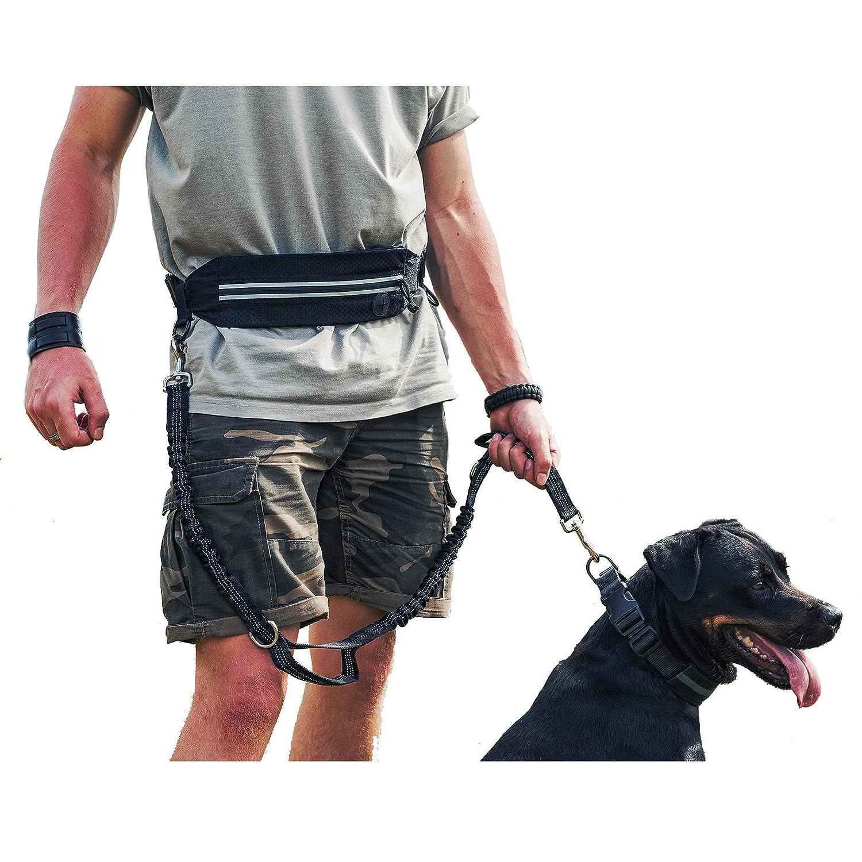 1T OneTigris Jogging Hundeleine mit Hüftbeutel/2Handgriffen/Bungee-Leine Reflektierende Nähte ,115 cm-175 cm
