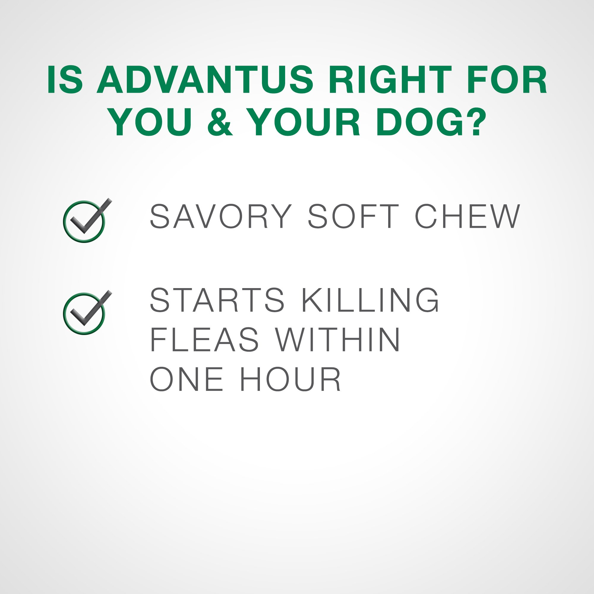 Advantus 30 Soft Chew for Large Dog, 4 lb or Greater