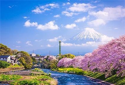 Amazon Com Csfoto 5x3ft Background For Mount Fuji Spring