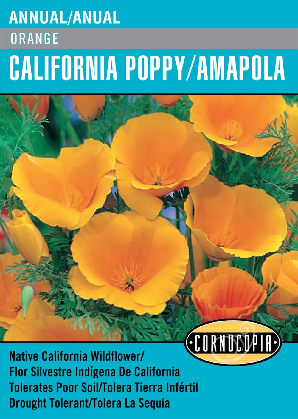 Amazon Orange California Poppy Amapola English