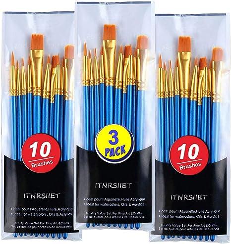 10PCS Nylon White Handel Hair Acrylic Watercolor Paint Brush Set with Case set