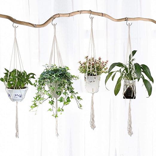 vasi per piante pendenti