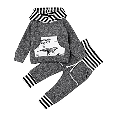 24f291c7a591 Amazon.com  Winsummer Toddler Baby Boys Dinosaur Long Sleeve Hoodie ...