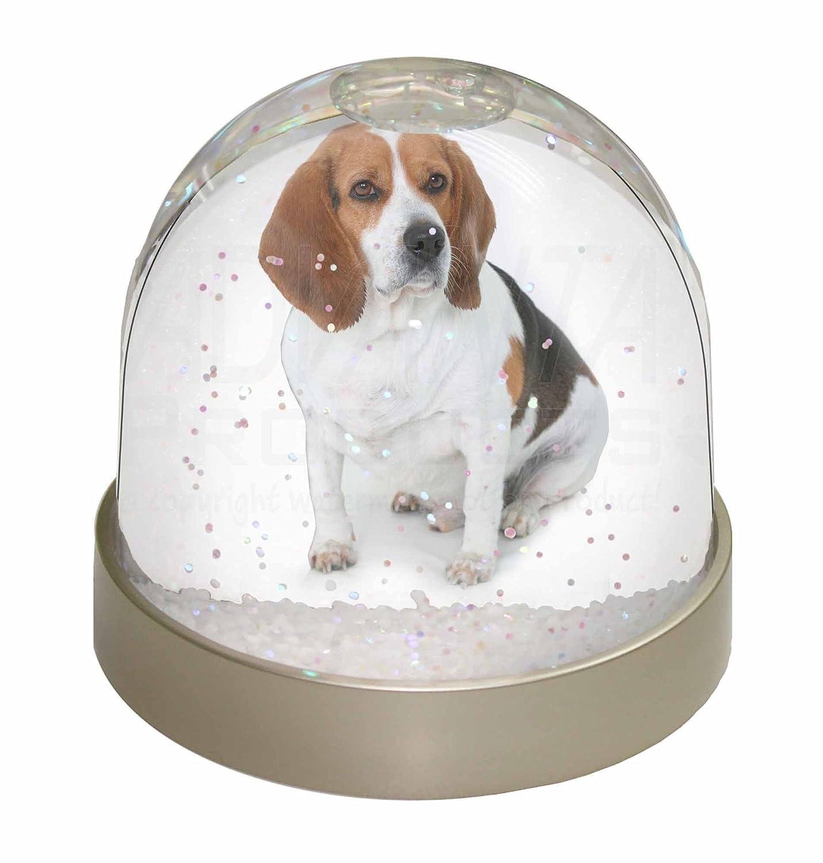Advanta Beagle Dog Snow Dome Globe Waterball Gift, Multi-Colour, 9.2 x 9.2 x 8 cm Advanta Products AD-BEA4GL