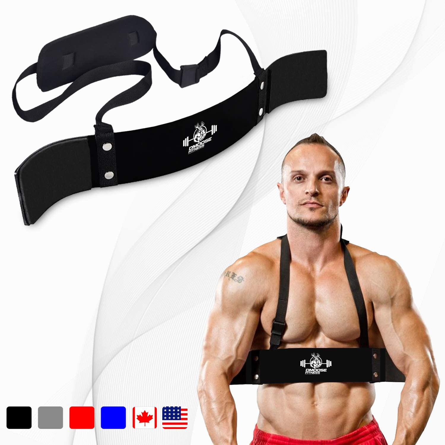 DMoose Fitness Arm Curl Blaster for Bicep Body Building and Muscle Strength Gains, Contoured and Adjustable Isolate for Curling and Weightlifting, Well Balanced Support : Sports & Outdoors