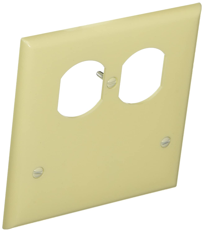 Amazon.com: Morris 81233 Lexan Wall Plate, 2 Gang with 1 Blank, 1 ...