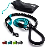 Heavy Duty Rope Leash for Large and Medium Dogs with Anti-Pull Bungee for Shock Absorption - No Slip Reflective Leash for Out