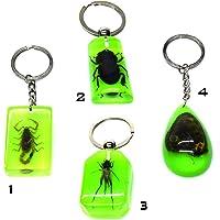 Fosilli Böcek Anahtarlık Akrep & Kelebek