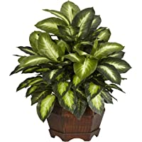 Nearly Natural 6639 24in. Golden Dieffenbachia Silk Plant,Green,12″ x 12″ x 35