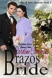 Brazos Bride: Men of Stone Mountain Book 1. Micah