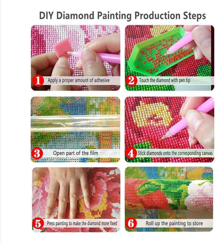 Kit Peinture Diamant 5d DIY Complet Diamond Painting Arts Docteur Who Enfants Adultes Broderie Cristal Point de Croix Full Drill Salon Chambre Artisanat pour la Maison Mur D/écor H1659 30x40cm
