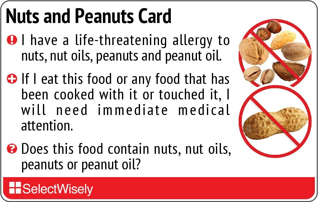 Nuts and Peanut Allergy Translation Card - Translated in French or any of 67 languages