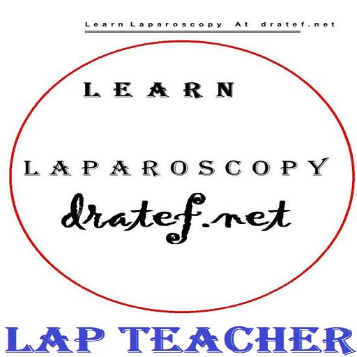 lap Teacher