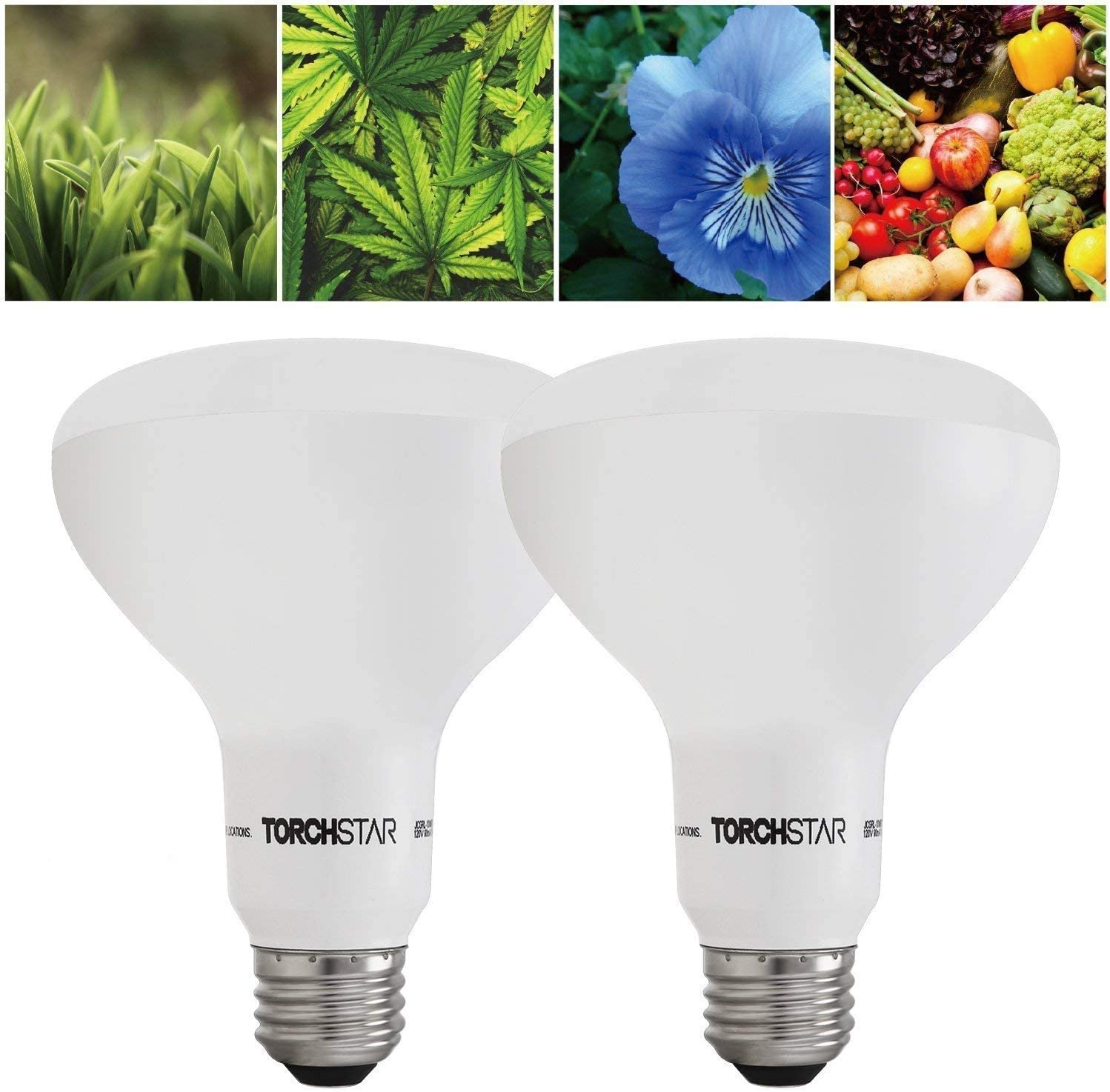 TORCHSTAR Grow Light Bulb, 10W BR30 Dimmable LED Plant Light UL-Listed for Indoor Planting, Gardening, Green House, 120 Flood Light, 2 Pack