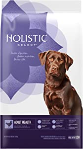 Holistic Select Natural Dry Dog Food Chicken