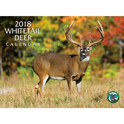 amazon com 2018 whitetail deer calendar office products