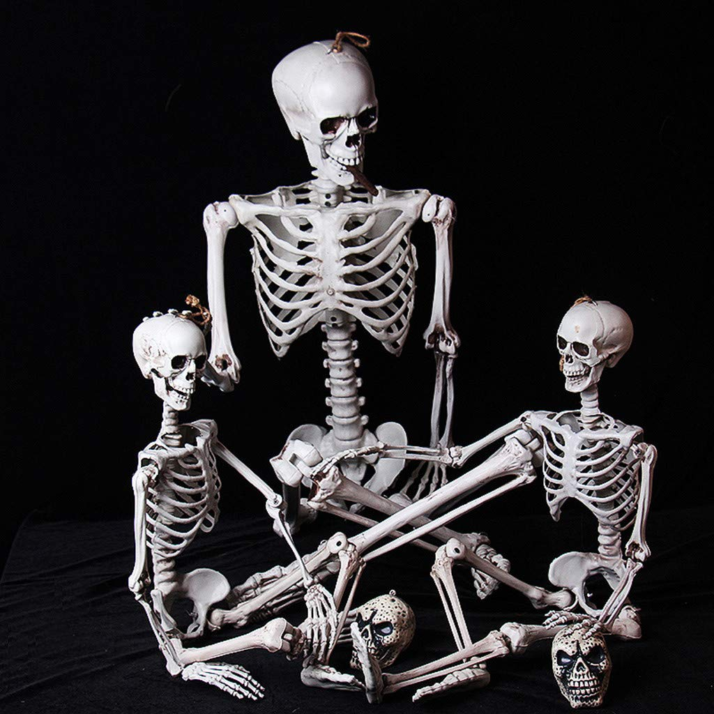 White Lucoo Halloween Skeleton Life Size Realistic Full Body Adult Human Skeletons Anatomical Skull Scientific Bones Models with Movable//Poseable Joints for Best Halloween Props Party Decoration
