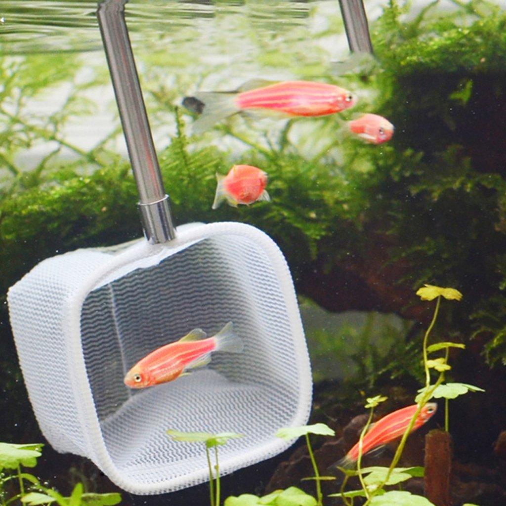 Dabixx Red retráctil cuadrada para acuario, color al azar