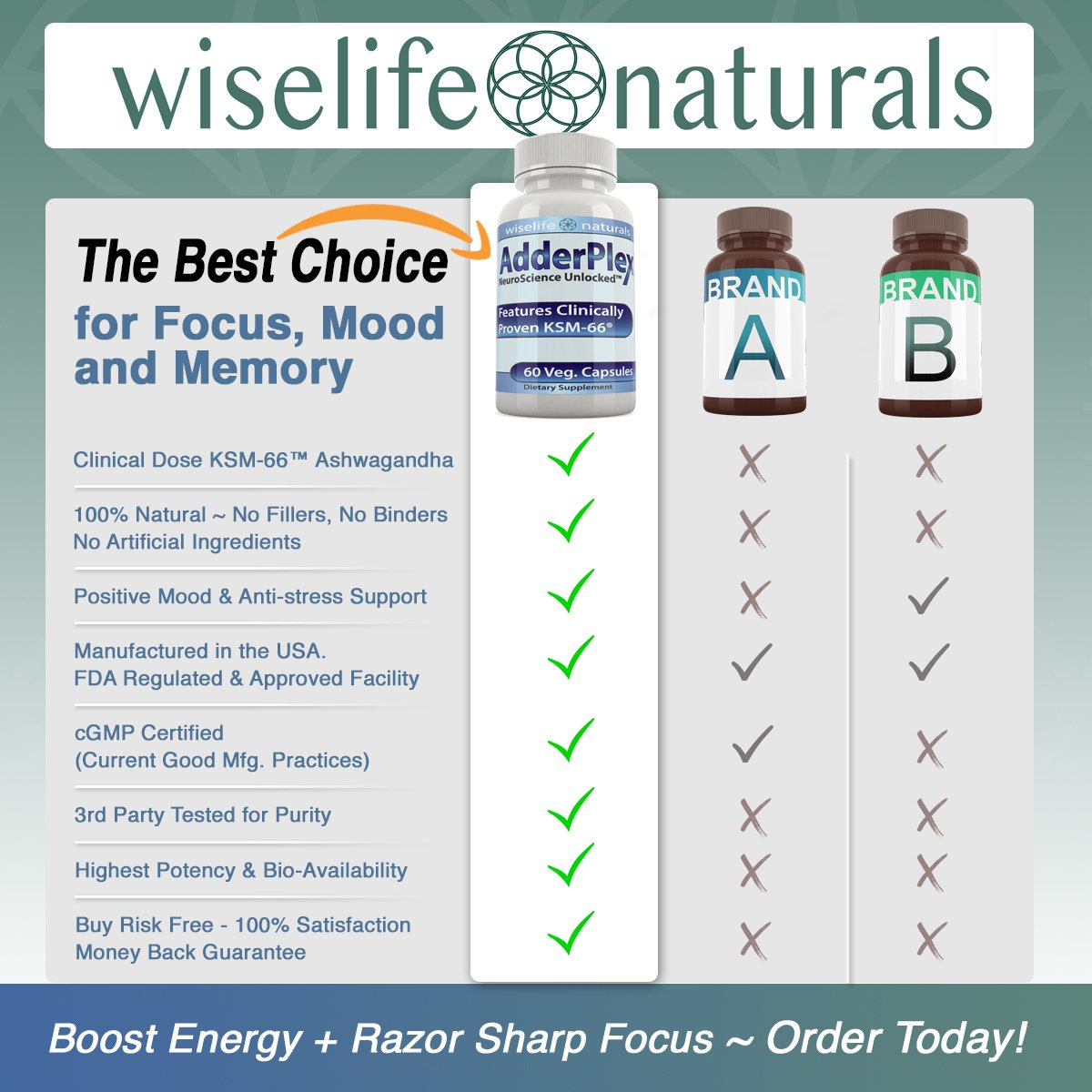 #1 Energy Boost Nootropic Brain Foods - Focus Mood Memory Natural Nerve  Tonic Anti Anxiety