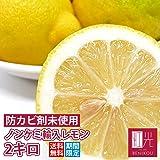 レモン ノンケミカル輸入レモン 2.0kg(サイズに大小あり)(約10-20個入り)「北海道・沖縄は+1100円」 (2kg)