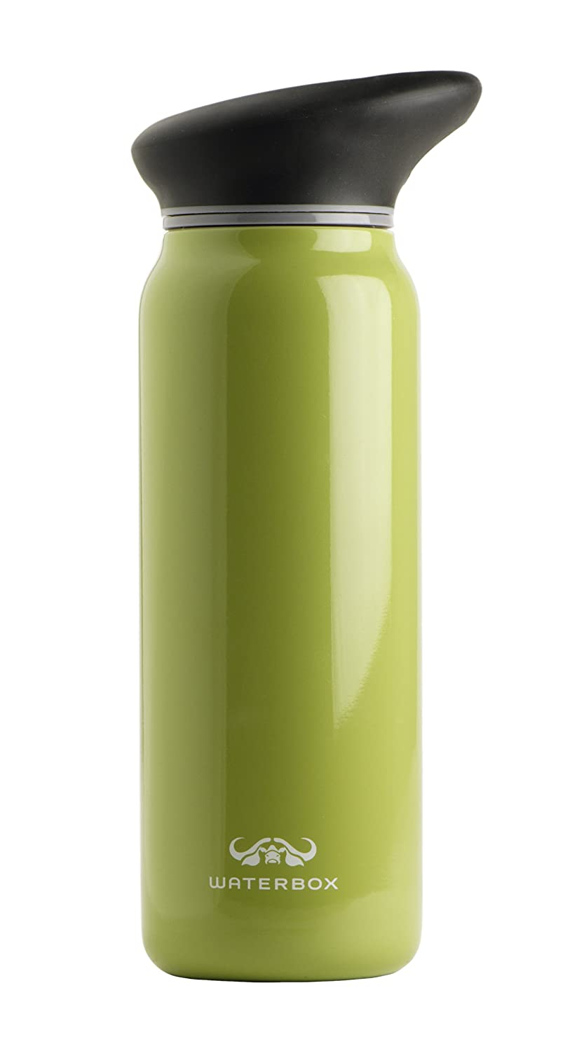 Amazon.com : Waterbox Round Stainless Steel Water Bottle (Citron ...