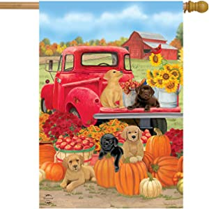 Briarwood Lane Fall Puppies House Flag Red Pickup Dogs Labs 28