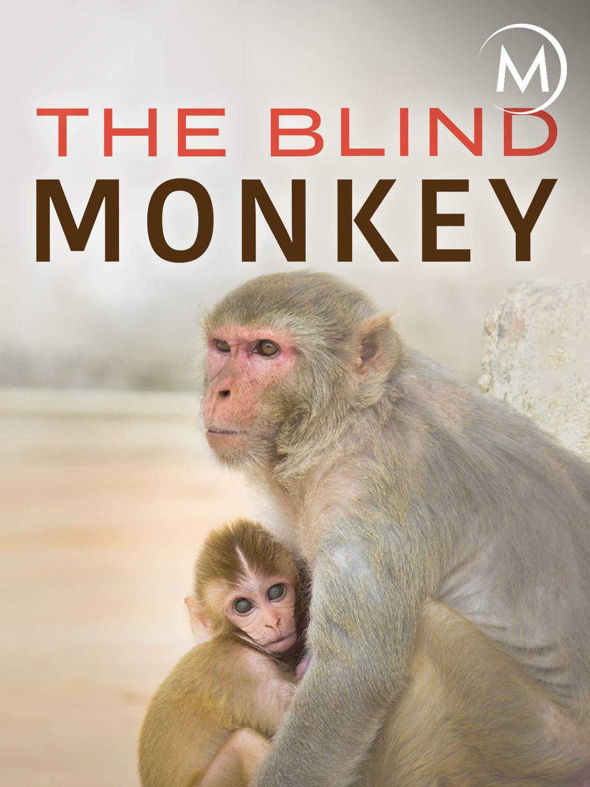 The Blind Monkey