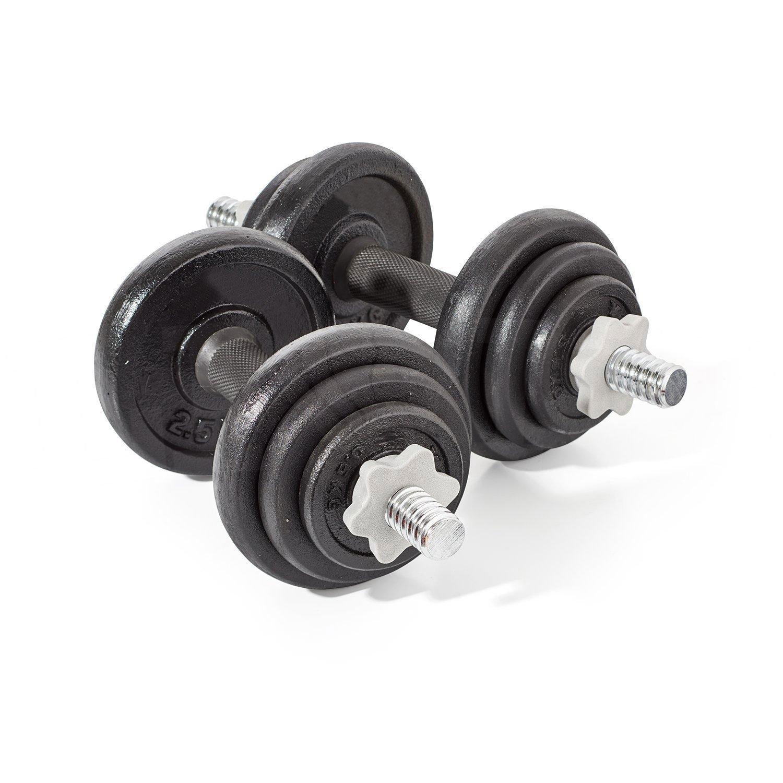 Leones® 20 kg de Hierro Fundido Juego de Mancuernas Gimnasio Libre Pesos bíceps Gimnasio Fitness: Amazon.es: Deportes y aire libre