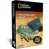 Mega Fossil Mine - Dig Up 15 Real Fossils with NATIONAL GEOGRAPHIC
