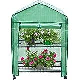 Finether Invernadero Portátil de 2 Estantes con Ruedas y Tapa Transparente, Ideal para Jardín, Balcón, Patio etc