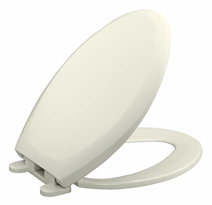 Swell Danze D490005Bc Soft Close Elongated Toilet Seat Biscuit Cjindustries Chair Design For Home Cjindustriesco