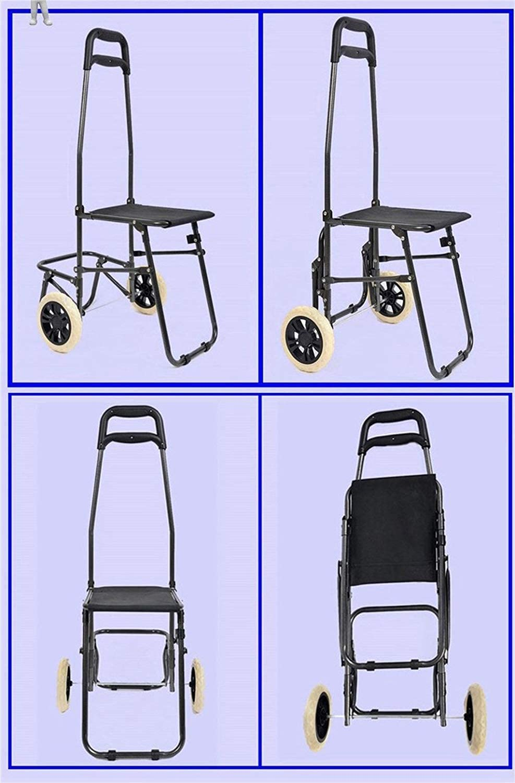 WCZZ Carro portátil/Con bolsa de silla Carro de compras/Carro de equipaje/Supermercado Compras Carro de acero, 5 Creative Home