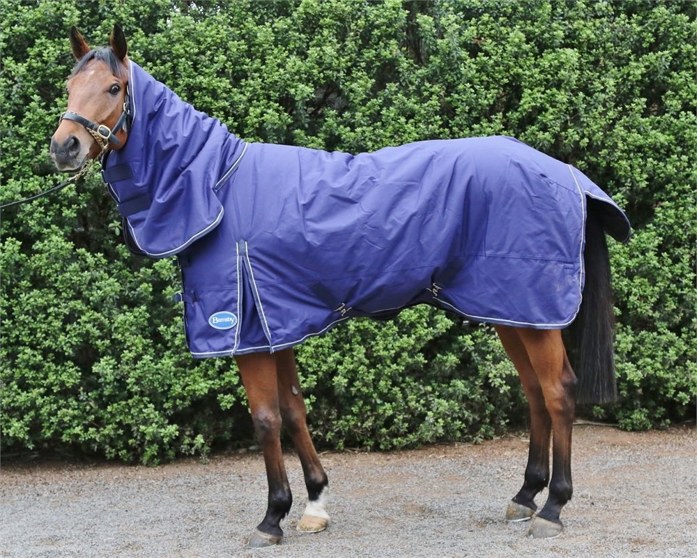 Barnsby Equestrian Waterproof Horse Winter Blanket/Turnout Rug Neck Combo - 600 Denier 300g Fill Navy 72'' by Barnsby