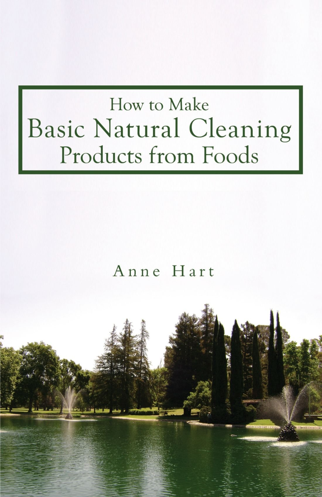 How to Make Basic Natural Cleaning Products from Foods pdf epub
