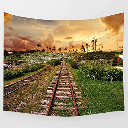 Amazon com: Simsant Rail Tapestry Sunset Champaign Tapestry