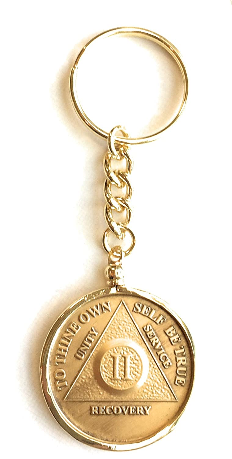 """AA Medallion Sobriety Chip Holder Necklace 24/"""" Gold Plated"""