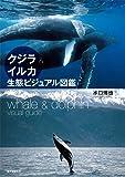 クジラ&イルカ生態ビジュアル図鑑