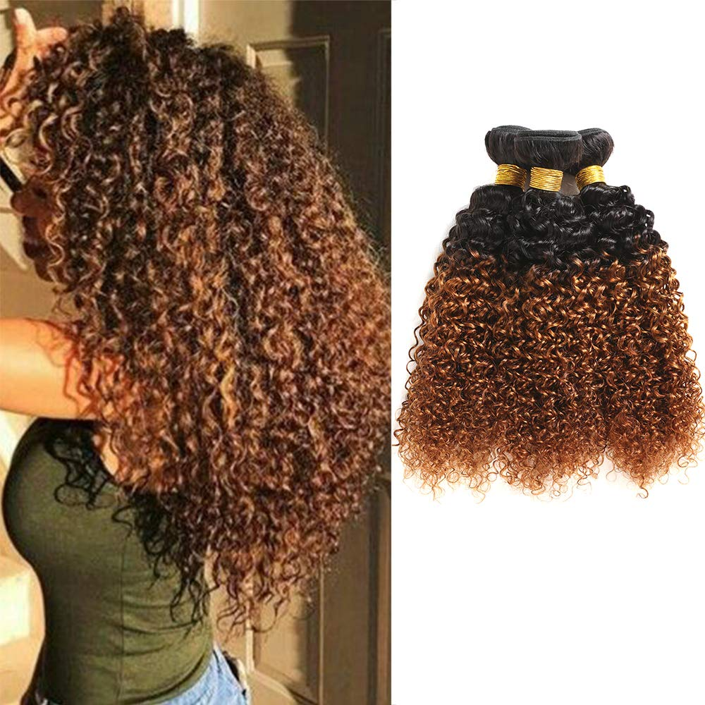 Feelgrace Hair Ombre Kinkys Curly Human Hair Extensions Brazilian Curly Hair 3 Bundles 2 Tone Ombre Hair Weave 1b/30 Blonde Color (8 10 12) by Feelgrace