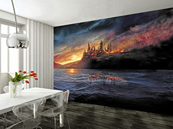 Amazoncom Dizzy Hogwarts Harry Potter Photo Wallpaper Woven Self