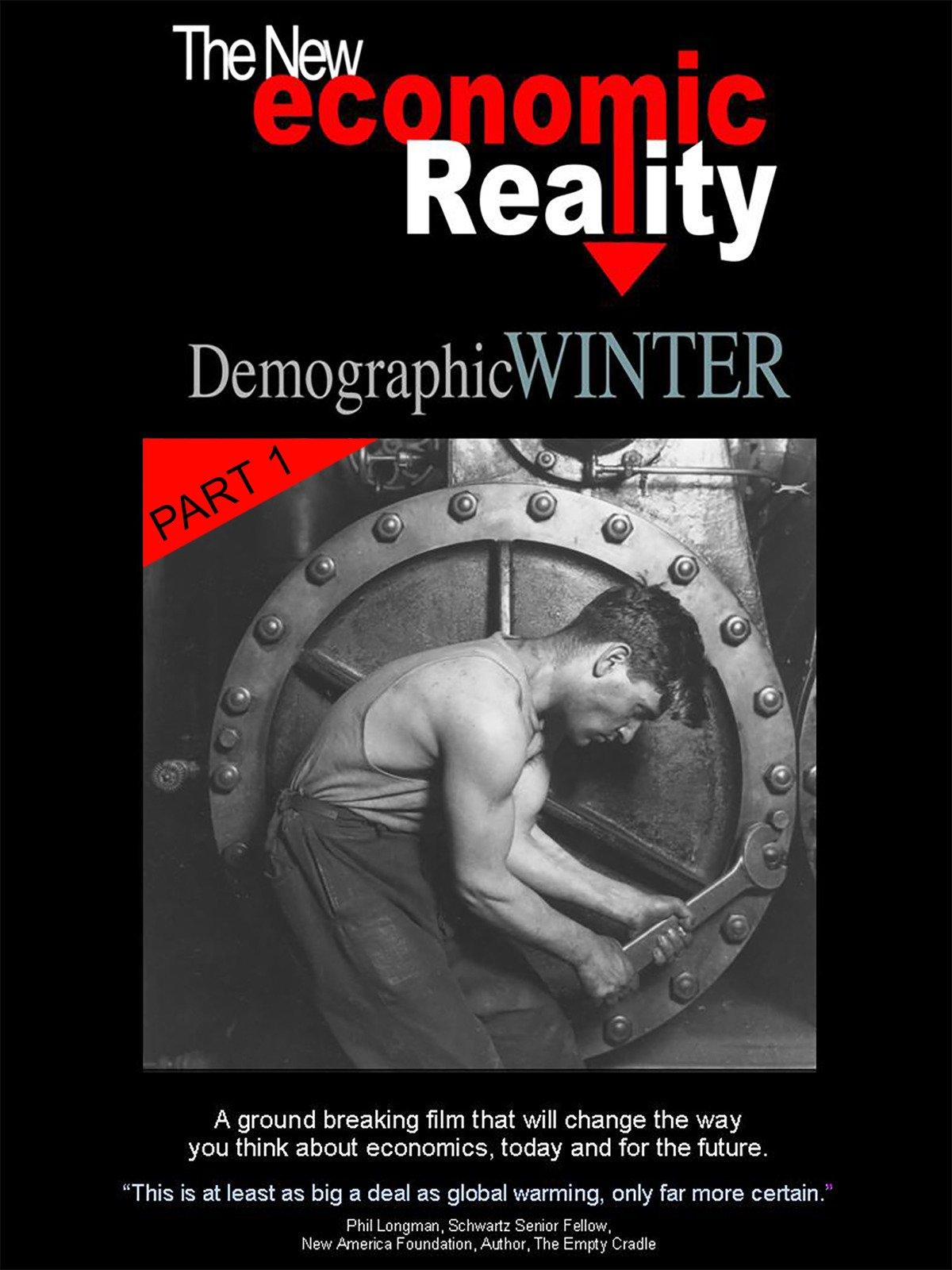 The New Economic Reality - Part 1 on Amazon Prime Video UK