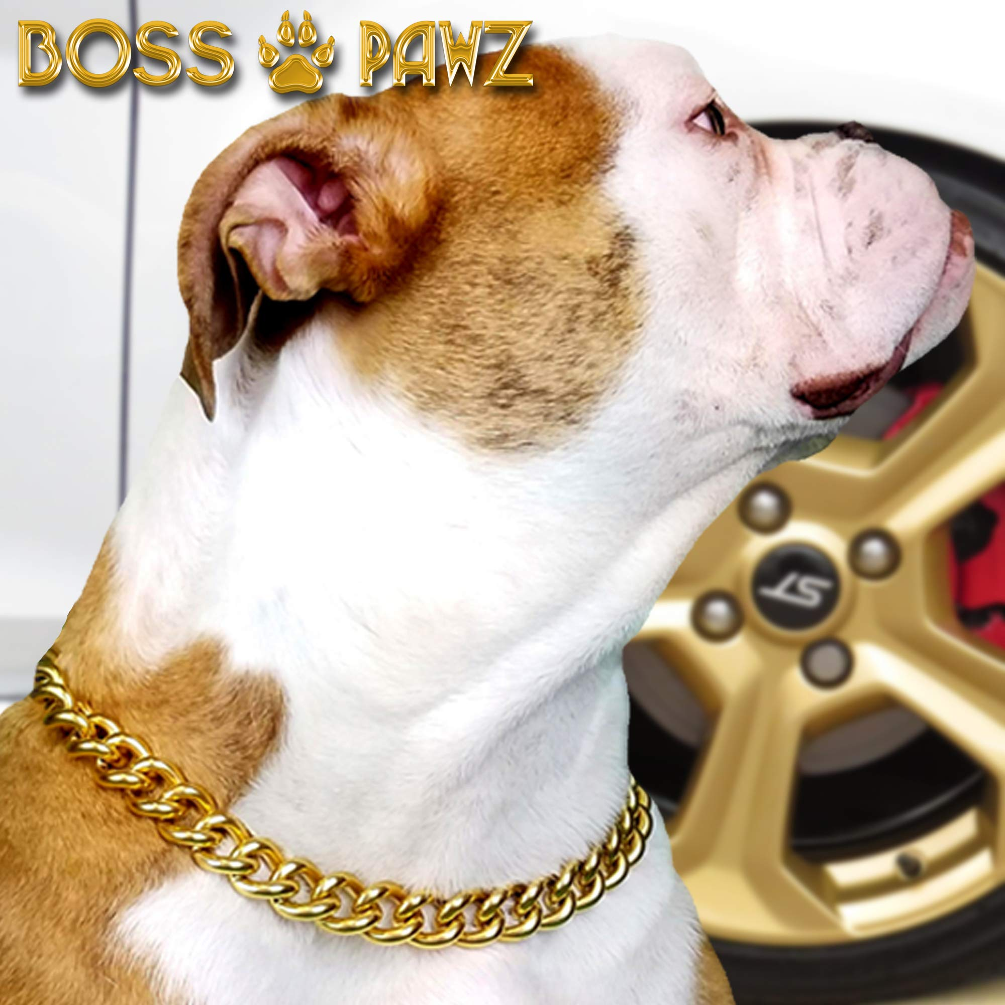 BOSS PAWZ Heavy-Duty Gold Chain Dog Collars Thick Welded Stainless Steel Cuban Chain Collar for Rottweiler (24'')