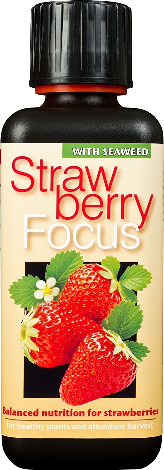 Growth Technology Ltd Strawberry Focus Balanced Nutrition 300ml GTSF300