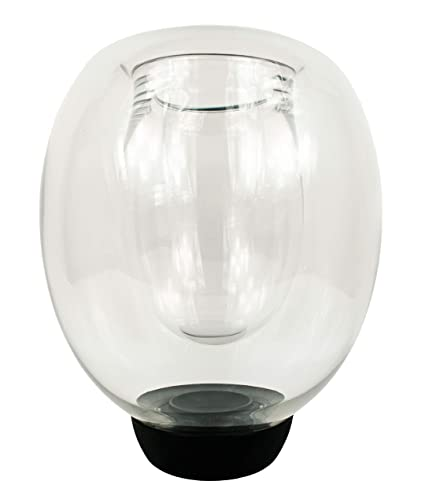 Amazon Vunder Double Walled Glass Blown Vase Perfect For Any